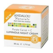 Andalou Naturals - Andalou Naturals Purple Carrot +C Luminous Night Cream