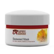 Dherbs Facial Seaweed Mask