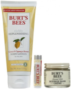 Bee Keeper's Winter Care Kit