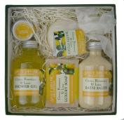 Medium Square Gift Box - Citrus