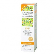 Andalou Naturals All in One Beauty Balm Sheer Tint SPF 30 2 fl oz
