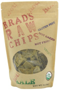Brad's Raw Foods - Vegan Chips Hot Kale - 90ml