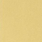 LaCarte Antique White Pastel Paper - 50cm x 60cm