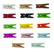 "LWR Crafts Wooden Mini Clothespins 14 Colours 100 Per Pack 1"" 2.5cm"