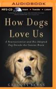How Dogs Love Us [Audio]