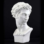 Plaster Cast Mini Head Of David