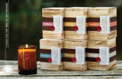 Found Goods Market 410ml Boxed Candle Magnolia Cypress