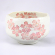 Matcha Bowl (Chawan) / Mino Yaki / Cute Size