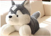 Stuffed Animal Lovely Husky Dog Plush Toy About 80cm Lifelike Husky Dog Doll Throw Pillowtoy H7635