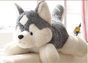 Stuffed Animal Lovely Husky Dog Plush Toy About 90cm Lifelike Husky Dog Doll Throw Pillowtoy H7637