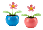 Solar Powered Dancing Flowers, Blue & Pink
