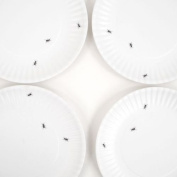 """""""What Is It."""" Eco Friendly Reusable White Dinner Plates with Ant Design-Set of 4"""
