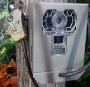 Stealth Cam G42NG No Glo Security Box