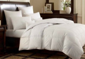 Multiple Sizes - White Goose Down Alternative Comforter -Twin - Exclusively by BlowOut Bedding RN #142035