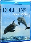 Dolphins: Spy in the Pod [Region B] [Blu-ray]