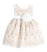 Sweet Kids Baby-Girls Sweet Vintage Elegance Lace Flower Girl Pageant Dress