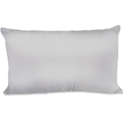 Spasilk 100-Percent Silky Satin Hair Beauty Pillowcase, Standard/Queen, Silver