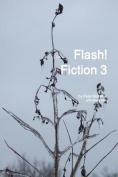 Flash! Fiction 3