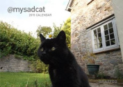 My Sad Cat 2015 Calendar