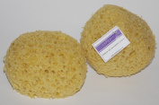 2 x Natural Looking Sponge