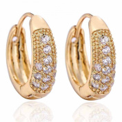 14K Gold Filled Inlay Round Clear Cubic Zirconia Small Hoop Earrings