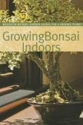 Growing Bonsai Indoors