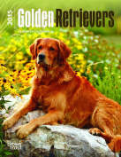 Golden Retrievers 2015 Desk Diary