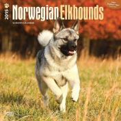 Norwegian Elkhounds 2015 Square 12x12