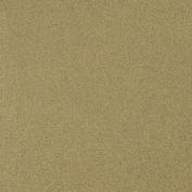 LaCarte Light Grey Pastel Paper - 50cm . X 60cm .