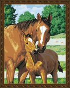 Diy oil painting, paint by number kit- Horses snuggle 16*50cm .