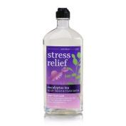Bath & Body Works Aromatherapy Eucalyptus Tea Stress Relief Body Wash and Foam Bath 300ml