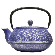 Primula Cast Iron 1180ml Teapot with Stainless Steel Infuser and Loose Green Tea Packet, Blue Floral Design