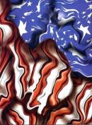 Freedom Flag Pinewood Derby Car Body Skin