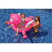 Inflatable Pool Toys Nz