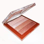 Summer Look Bronzer Bronzing Pressed Powder Shimmer Brick Palette
