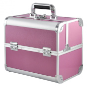 chinkyboo Pink Beauty Box Make Up Rose Vanity Case Cosmetic Nail Jewellery Case