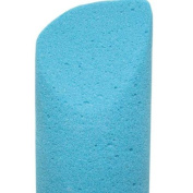 Pumice Sponge - (Blue)