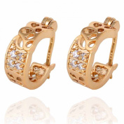 Yazilind Elegant Hollow Design 14K Gold Filled Inlay Riund Clear Cubic Zirconia Dangle Drop Earrings for Women