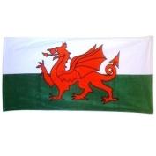 Welsh Wales Cymru Flag Beach bath Towel
