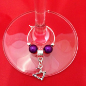 Individual '21st' Wine Glass Charm by Libby's Market Place