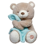 Carter's Sleep Solutions Lullaby Soother Musical Brown Bear