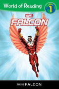 World of Reading Falcon