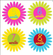 Monthly Stickers Baby Month Stickers Baby Girl Monthly Stickers Girl Flower Stickers Pink Green Yellow Blue Maroon