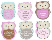 Monthly Stickers Baby Month Milestone Stickers My First Milestones Baby Monthly Stickers Monthly Baby Girl Stickers Plaid Owls UNCUT Argyle Damask Stripes Dots Girl Owls Girl Monthly Baby Stickers