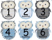 Monthly Baby Boy Stickers Monthly Baby Boy Owl Stickers Plaid Owls Argyle Gingham Black Blue Boy Month Stickers UNCUT Baby Shower Gift