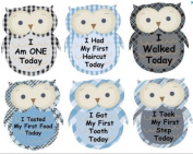 Monthly Stickers Baby Month Stickers Baby Boy Monthly Stickers Baby Boy First Milestone Monthly Baby Onesie Stickers My First Onesie Stickers Plaid Owls Argyle Gingham Black Blue