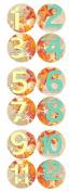 SEA SHELLS BEACH SAND Baby Month Onesie Stickers Baby Shower Gift Photo Shower Stickers, baby shower gift Beach Sand seashells