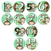 BOY GREEN BANANA MONKEYS - Belly Stickers - Baby Monthly Onesie Stickers - Baby Photo Milestone Stickers - Scrapbook Baby Shower Gift - Photo Shower Stickers - 1 to 12 Monthly Stickers