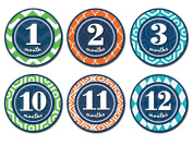 Sticky Bellies -Sticky Bellies Monthly Milestone Stickers - Patterned Prepster 1-12 months