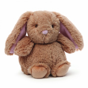 Baby Gund Chubs Bunny Rattle